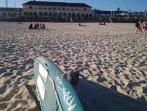 sidney surfboard