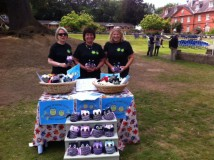 Owls Elstree fete